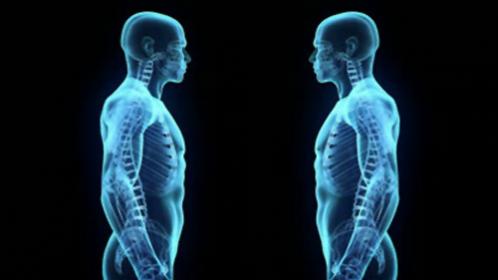 Gli alimenti essenziali per il corpo - Perché l'integrazione di Daniele Guarrera