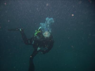Sara Padovani by GRAVITY ZERO Diving TEAM